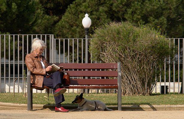 park bench building plans