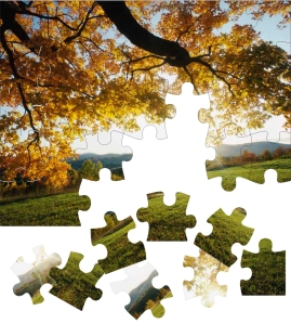 jigsaw puzzle autumn tree